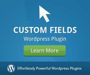 custom-fieldsjpg